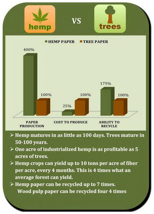 hemp papers Hemp/cannabis papers rolling papers made from hemp are becoming increasing popular as more and more people are becoming aware of environmental issues paper made from hemp eliminates the need for trees to.